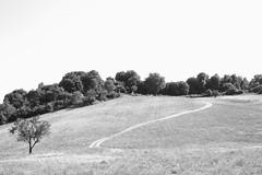 Saturnia (Eleonora Pol) Tags: saturnia collina termesaturnia toscanahills