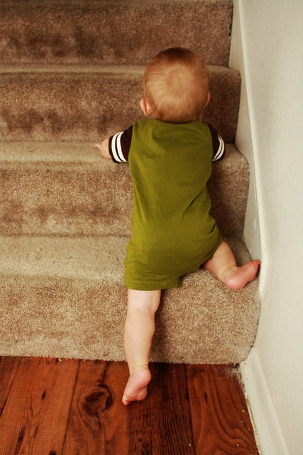 Uh oh, trying to climb the stairs...
