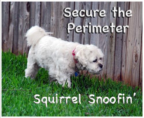 Secure-Perimeter