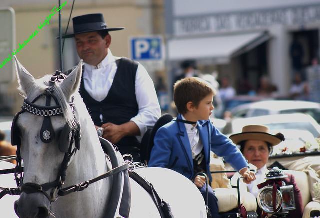 desfileequestre03092011gfinal