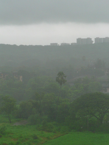 Rain on Aarey Milk Colony