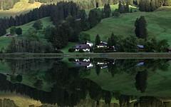 Another mirror image ? - IMG_1450 (Swaranjeet) Tags: vacation india lake canon landscape switzerland is europe photos fribourg thane mumbai scape 70200 f28 ef schwarzsee singh sjs 2011 swaran sjsphotography eos5dmkii ef70200mmf28lisiiusm canonef70200f28lisiiusm swaranjeet swaranjeetsingh swaranjeetphotography sjsvision