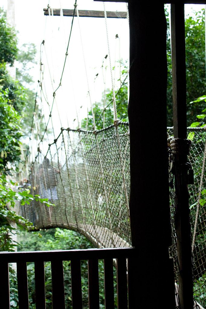 Canopy Entrance