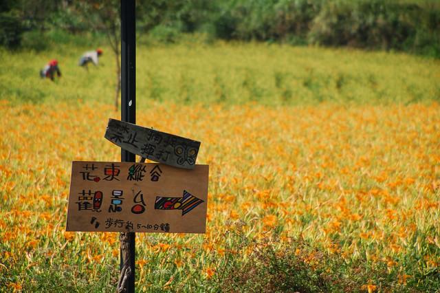 2011.09.03 花蓮 / 玉里 / 赤科山
