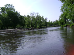 Canoeing down the Pomme de Terre River