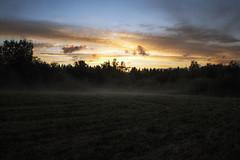 Misty Sunset Pt1 (Zds_) Tags: sunset mist digital canon suomi finland eos is engine ale 1855mm efs vantaa usva auringonlasku f3556 myyrmäki 450d mätäoja canonefs1855mmf3556is libraw antilamenessing