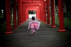 [Free Image] People, Children, Girls, Shrine / Temple, Behind, Kimono/Yukata, 201109130700