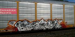 REYES by FUNER (YardJock) Tags: art car train mexico graffiti dvd steel graf tracks railway holy roller freight rolling autorack