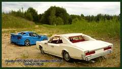 Pontiac GTO family picture