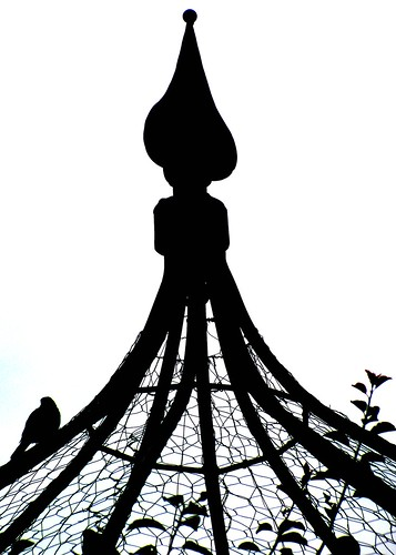 09/13/11 Bird on a Cage by roswellsgirl