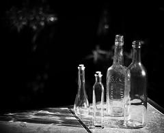 gang of four (Maureen Bond) Tags: light sunlight reflection glass garden four afternoon bottles bokeh seethrough maureenbond