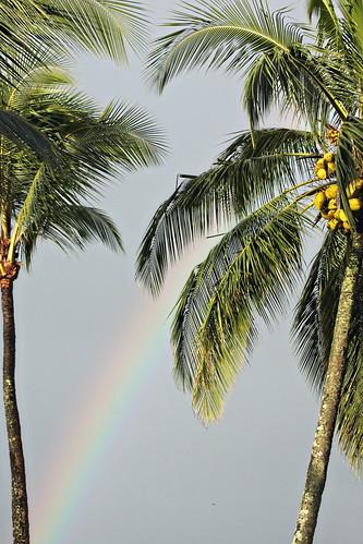 Kauai 037