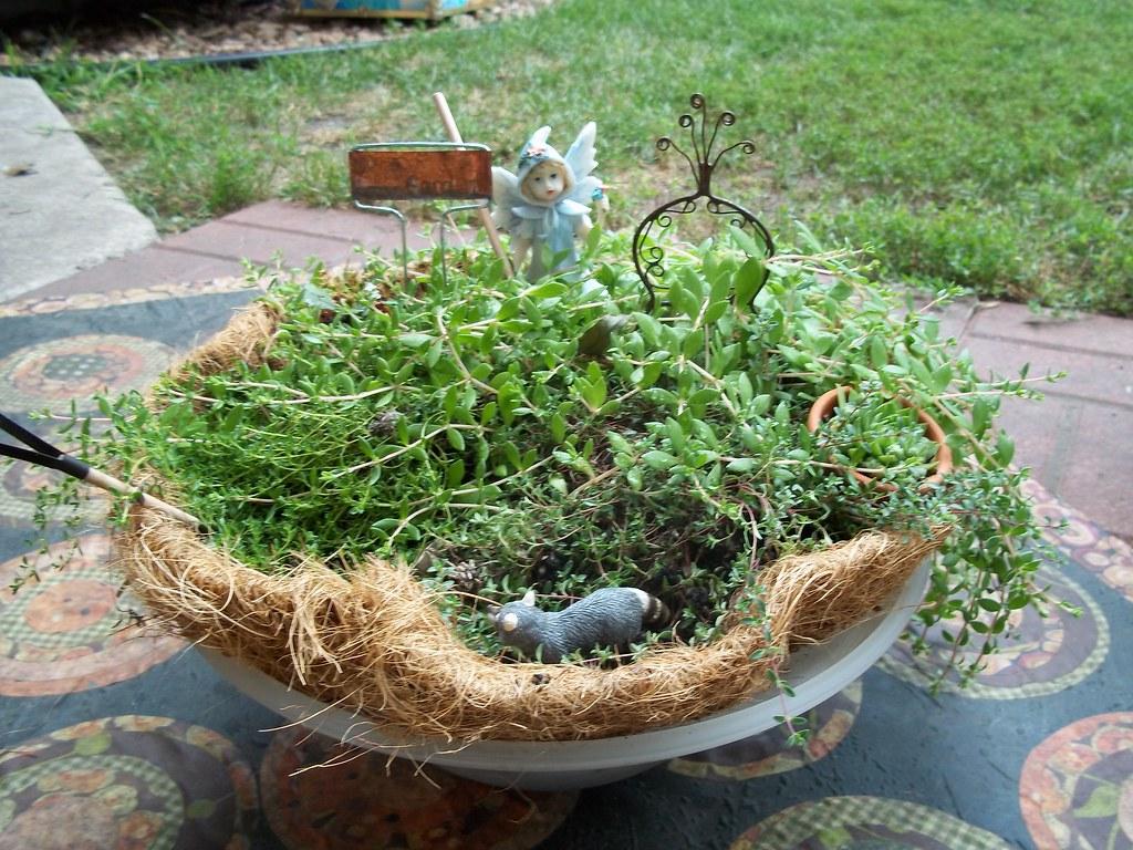 Debbie's Fairy Garden
