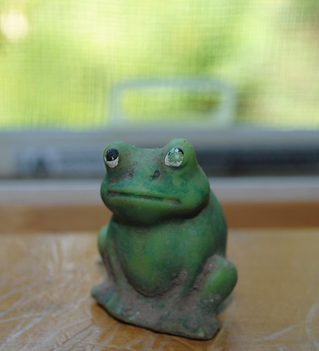 House Frog