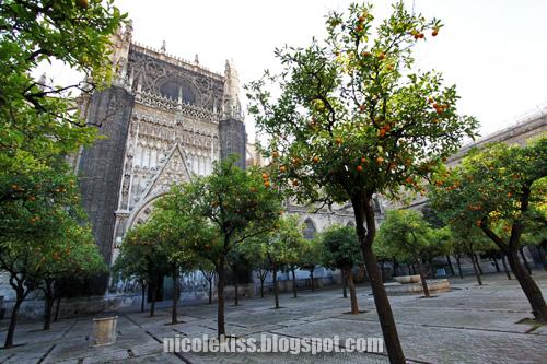 seville cathedral garden
