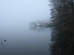 Winter (Harry Mijland) Tags: winter holland nederland maarssen dearharry kleineplas harrymijland