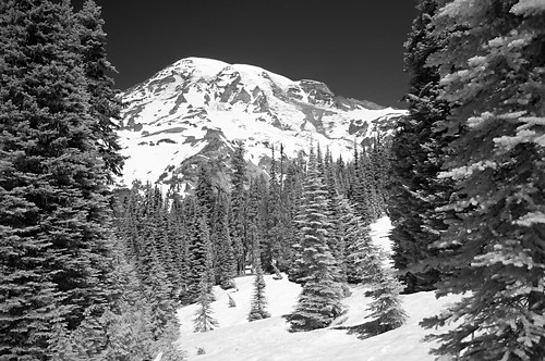 South Slope of Rainier