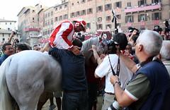 Il vincitore/The winner (mirjan (con la n)) Tags: summer italy horse italia estate tuscany siena toscana cavalli palio giraffa piazzadelcampo paliodisiena palio2011 paliodellassunta2011