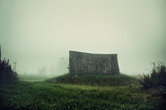 (dSavin) Tags: roof grass fog landscape village russia cellar moning 2011