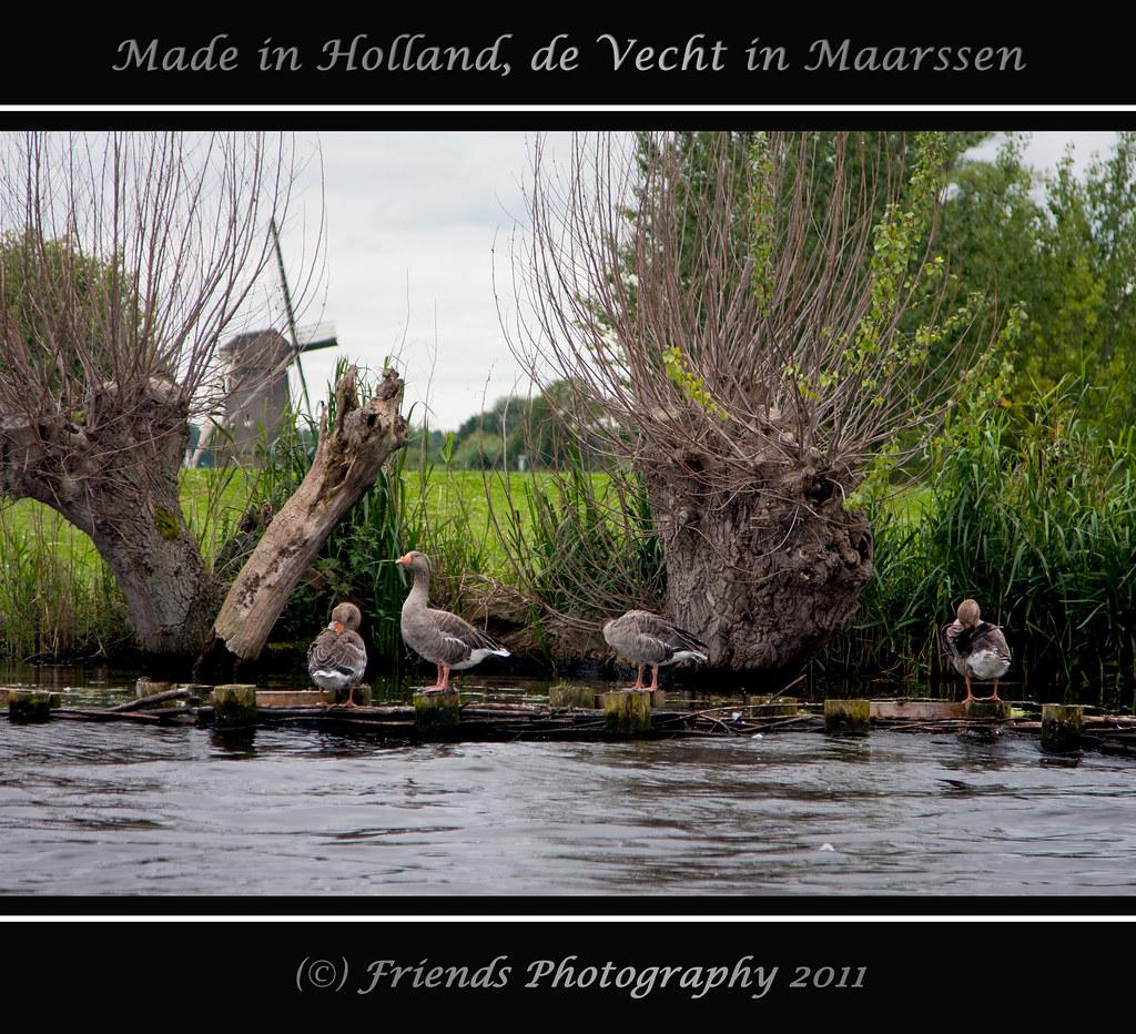 Classical Dutch scenery