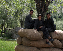 Skardu 069 (shirazbashir) Tags: shangrilla deosai skardu upperkachura