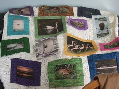 Phyllis's quilt the beginning 2