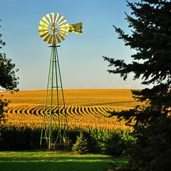summer windmill cornfield nikon country iowa johndeere d90 explore57
