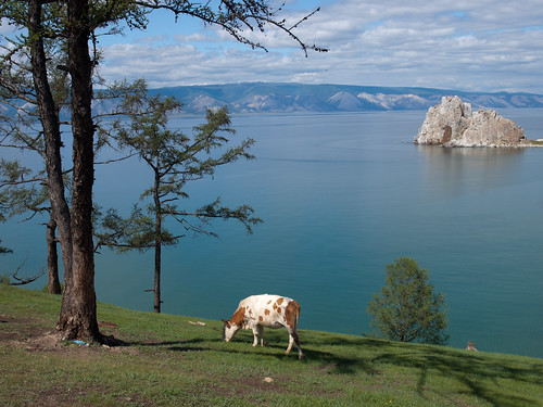 Baikal (39)
