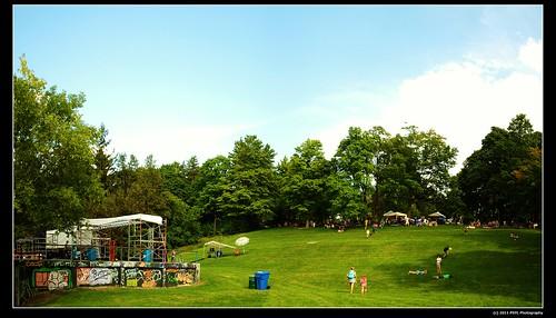 Nicholls Oval Park