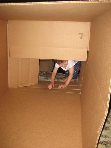 Henry in box