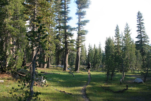 Hoover Wilderness