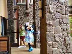 Disney's Aulani Opening (coconut wireless) Tags: hawaii stitch waikiki oahu disneyland disney mickeymouse hawaiian honolulu minniemouse wdw waltdisneyworld koolina dvc timeshare waianae leeward kapolei vacationclub disneyvacationclub aulani aulaniresort waikolohevalley