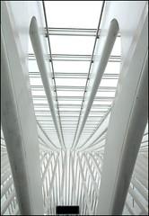 Construction 2 (Calmpjes) Tags: construction trainstation calatrava 1022mm luik treinstation constructie