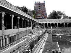 Meenakshi Amman temple-Madurai