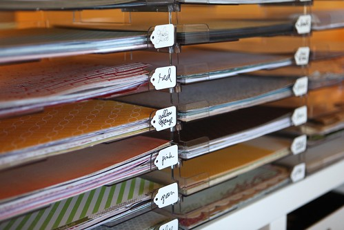 pattern paper trays