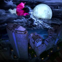 Bad omen (jaci XIII) Tags: city cidade moon night witch lua noite moonlight luar bruxa
