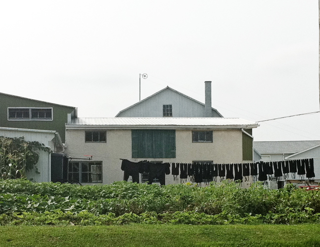 clothesline (Amish Country trip)