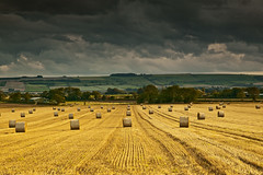 Straw Bales - Explored 05/09/11 (mark_mullen) Tags: field landscape farming explore scarborough brooding stormbrewing northyorkshire haybales brompton darksky canon1ds a170 flickrexplore explored snainton 24105f4is flickrexplored markmullen markmullenphotography