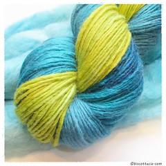 thrum nimbus bleuet (1)