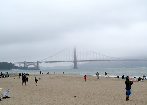 Crissy Field... there were a lot more dogs around than you can see in this pic