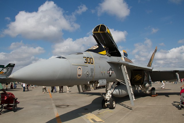 VFA-192 Golden Dragons CAG