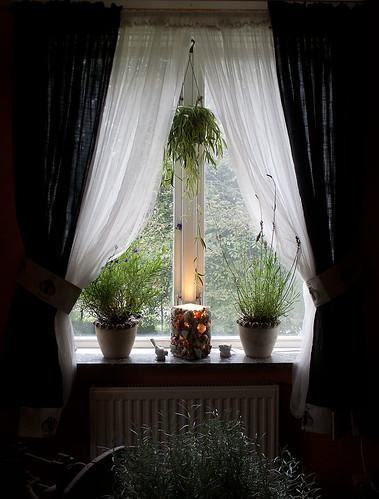 I mitt fönster
