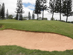 WAIKELE COUNTRY CLUB 239