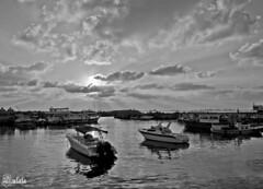 Arwad port (Sulafa) Tags: sunset tartous