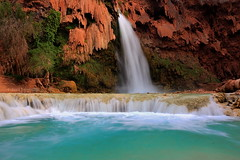 Natural spa (Chief Bwana) Tags: waterfall az 100views 400views 300views 200views supai havasucanyon havasufalls havasucreek psa104 chiefbwana