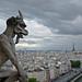 Tour de la cathédrale Notre Dame de Paris - Notre Dame Cathedral tower