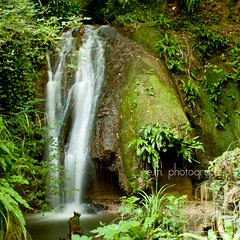 Souvenir (dolcedgiorno) Tags: green nature water waterfall acqua marmore cascata cascatella