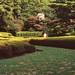 真夏の和風庭園