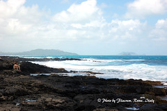 Solitude ( You, a book and the ocean music ) (Flacrem) Tags: ocean travel sea usa beach america hawaii mare pacificocean ohau makapuubeach flacrem flaviocrem