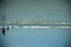 The wrong way right (wiseacre photo) Tags: ocean sky people beach water upsidedown flip invert